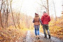 Casal maduro caminhando ao longo do caminho rural, no outono, visão traseira — Fotografia de Stock