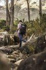Senderismo masculino por formación de rocas forestales, Deer Park, Cape Town (Ciudad del Cabo), Sudáfrica - foto de stock
