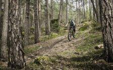 Woman mountain biking in forest, Bozen, South Tyrol, Italy — Stock Photo