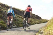 Вид сзади на велосипедистов, едущих по проселочной дороге в солнечный день — стоковое фото
