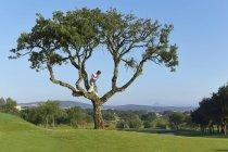 Golfeur debout dans l'arbre se préparent à passer le swing de golf — Photo de stock