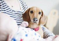 Mujer sosteniendo bebé y perro - foto de stock