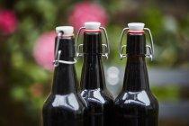 Three beer bottles, close up shot — Stock Photo