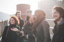 Шесть молодых взрослых друзей в чате и смеялись на мостках — стоковое фото