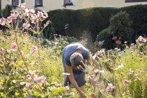 Mature woman gardening, bending over — Stock Photo