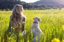Задний вид зрелой женщины и лабрадора ретривера, сидящего на залитых солнцем лугу полевых цветов — стоковое фото