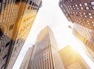 Низкоугольный вид на солнечные офисные здания, финансовый район Манхэттен, Нью-Йорк, США — стоковое фото