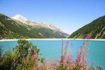 Schlegeis dam with Schlegeis glacier in the distance, Zillertal High Alpine nature park, Hochgebirgs Naturpark, Tirol, Austria — Stock Photo