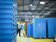 Працівник організації пластикових ящиків в пластмас заводу — стокове фото