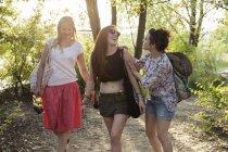 Три подруги гуляют по лесу — стоковое фото