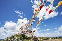 Reihen mit bunten Gebetsfahnen gegen blauen Himmel, Zhagana, Gansu, China — Stockfoto