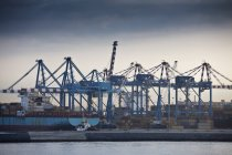 Containers terminal, Naples, Italy — Stock Photo