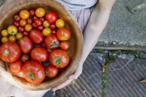 Дитина холдингу миску помідори — стокове фото