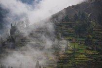 Terrasses agricoles au-dessus de Tarma, Junin (Pérou), l'Amérique du Sud — Photo de stock