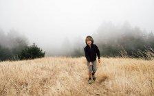 Мальчик в туманном поле, Фэрфакс, Калифорния, США, Северная Америка — стоковое фото