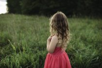 Rear view of blond haired girl looking out over field — Stock Photo