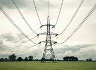 Pylône électrique dans le domaine rural — Photo de stock