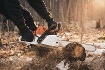 Homme tronçonnage tronc d'arbre dans la forêt d'automne — Photo de stock