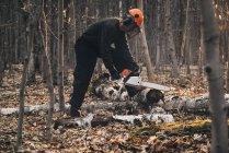 Maturo uomo chainseging albero tronco su autunno foresta terra — Foto stock