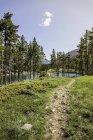 Path by lake, Montana, US — Stock Photo