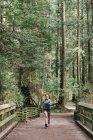Женщина работает в лесу, Ванкувер, Канада — стоковое фото