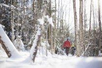 Задній вид чоловік і син в снігу покриті лісом — стокове фото