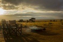 Fogueira de acampamento e cadeiras na manhã, Parque Nacional de Tarangire, Tanzânia, África — Fotografia de Stock