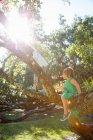 Deux filles grimpant sur l'arbre au soleil — Photo de stock