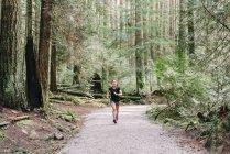 Вид женщины, бегущей по лесу, Ванкувер, Канада — стоковое фото
