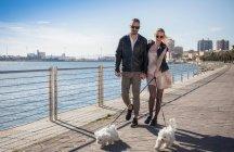 Couple walking with dogs on promenade, Cagliari, Sardinia, Italy, Europe — Stock Photo