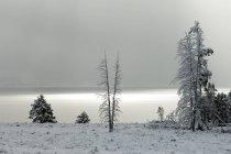Yellowstone Lake nach Schneefall, Yellowstone-Nationalpark, Wyoming, Usa — Stockfoto