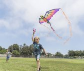 Boy flying colorful kite on green field — Stock Photo