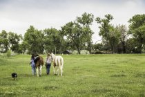 Rear view of young woman and her sister leading horses in field, Bridger, Montana, USA — Stock Photo