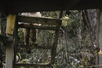 Cropped view of girl climbing steps of tree house — Stock Photo