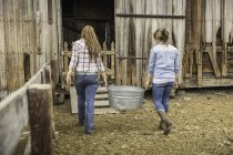 Rear view of two young women carrying animal feed to ranch barn, Bridger, Montana, USA — Stock Photo
