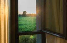 Vista do gramado verde da janela de casa — Fotografia de Stock