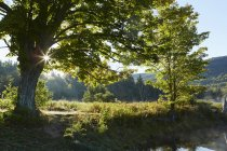 Scenic view of Colgate Lake Wild Forest, Catskill Park, New York State, USA — Stock Photo