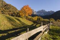 Живописный вид на горы Одле, Санта-Маддалена, долину Фунес, Дамбы, Альто-Абебу, Италия, Европа — стоковое фото