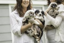 Cropped shot of young woman and mother holding sheepdog puppies on ranch, Bridger, Montana, USA — Stock Photo
