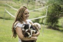 Joven mujer sosteniendo sheepdog cachorros en Rancho, Bridger, Montana, Usa - foto de stock