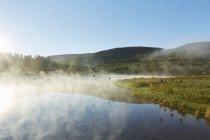 Vistas panorámicas, Colgate Lake Wild Forest, Catskill Park, Estado de Nueva York, Estados Unidos - foto de stock