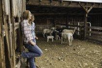 Zwei junge Frauen lehnen an Ranch Scheune plaudernd, Bridger, Montana, USA — Stockfoto