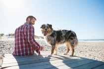 Man sitting on beach boardwalk with dog — Stock Photo