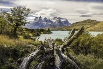 Mountain landscape with Grey Lake, Paine Grande and Cuernos del Paine, Torres del Paine national park, Chile — Stock Photo