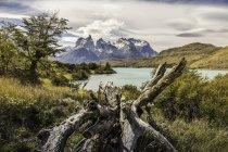 Paisagem de montanha com Lago Grey, Paine Grande e Cuernos del Paine, Parque Nacional de Torres del Paine, Chile — Fotografia de Stock