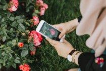 Giovane donna scattare foto fiori su smartphone — Foto stock