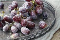Sugar frosted black grapes on tray — Stock Photo