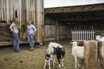 Deux jeunes femmes se penchant contre Grange ranch bavarder, Bridger, Montana, Usa — Photo de stock