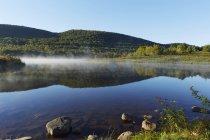 Vista panorámica de Colgate lago salvaje bosque, estado del parque de Catskill, Nueva York, Estados Unidos - foto de stock