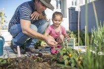 Vater und Tochter pflegen Pflanzen im Garten — Stockfoto